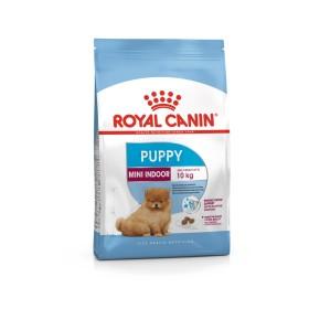 غذای خشک سگ نژاد کوچک داخل خانه 2 تا 10 ماه رویال کنین