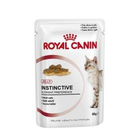 پوچ گربه بالغ بالای 12 ماه در ژله رویال کنین