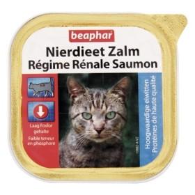 کنسرو پیشگیری و درمان مشکلات کلیوی حاوی تکه های طبیعی ماهی سالمون بیفار
