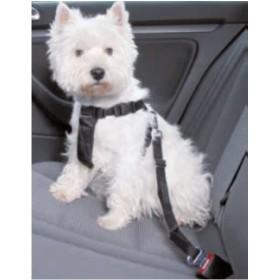 دهنه ی سگ در ماشین تریکسی