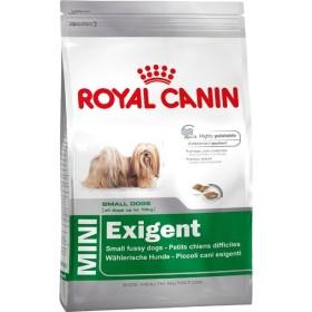 غذای خشک سگ نژاد کوچک بدغذا رویال کنین - 1 کیلوگرم