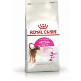 غذای خشک گربه بداشتهای حساس به بوی غذا رویال کنین