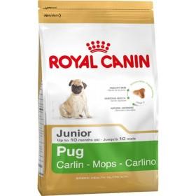 غذای خشک سگ نژاد پاگ 2 تا 10 ماه رویال کنین