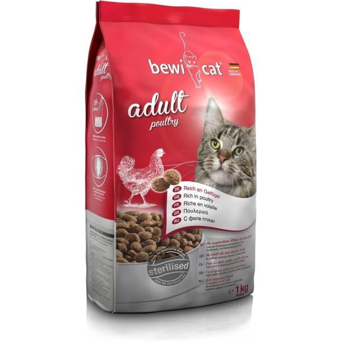 غذای خشک گربه ادولت بوی کت