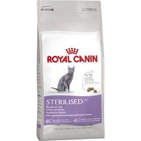 غذای خشک گربه بالغ عقیم شده رویال کنین - 10کیلوگرم