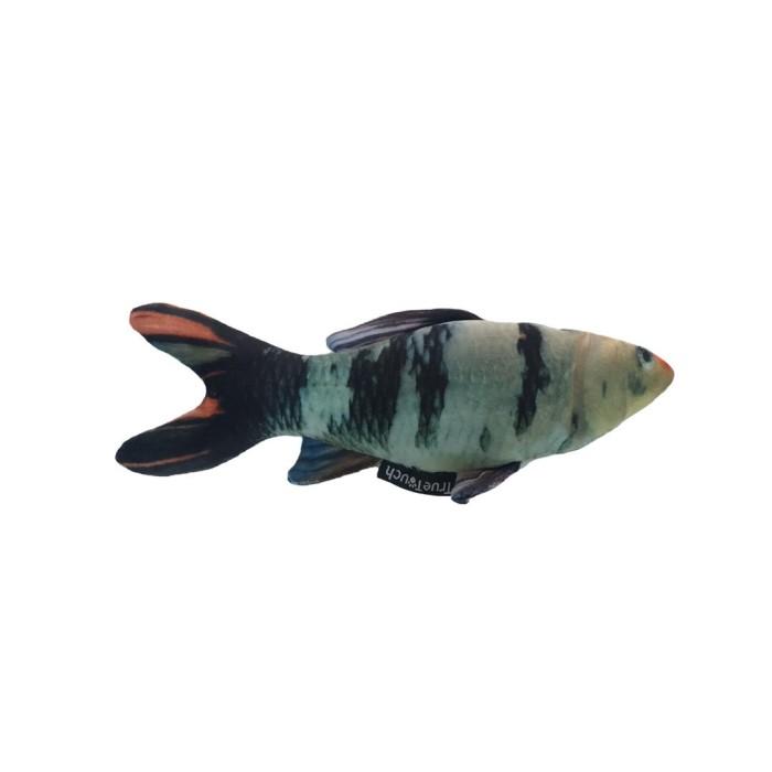 اسباب ماهی کت نیپ دار - تروتاچ