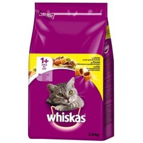 غذا خشک گربه بالغ با طعم مرغ ویسکاس - 1.4 کیلوگرم