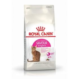 غذای خشک گربه بداشتهای حساس به طعم غذا رویال کنین -2کیلوگرم