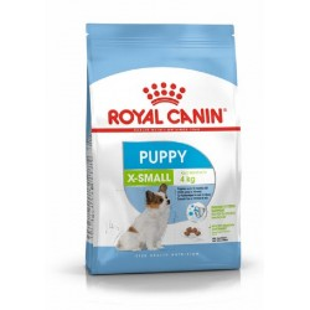 غذای خشک سگ نژاد خیلی کوچک 2 تا 10 ماه رویال کنین