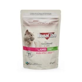 پوچ مخصوص گربه عقیم شده با طعم گوشت بوناسیبو - 85 گرم