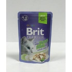 پوچ مخصوص گربه بالغ  با طعم قزل آلا بریت -85 گرم