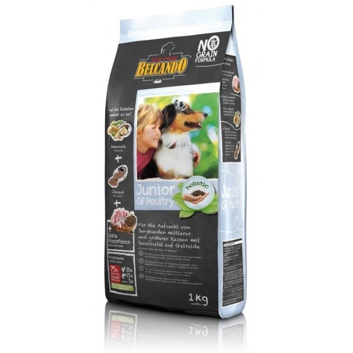 غذای خشک توله سگ نژاد بزرگ بلکاندو