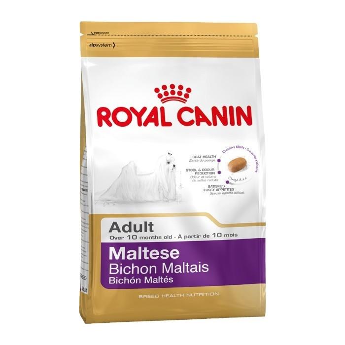 غذای خشک سگ نژاد مالتیز بالای 10 ماه رویال کنین